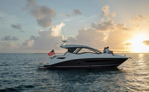 New Sea Ray Sundancer 350 Coupe Power Cruiser Boat For Sale