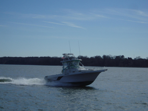Used Pro Line 2950 Saltwater Fishing Boat For Sale