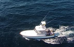 Used Scarborough Custom Carolina 38 Express Sports Fishing Boat For Sale