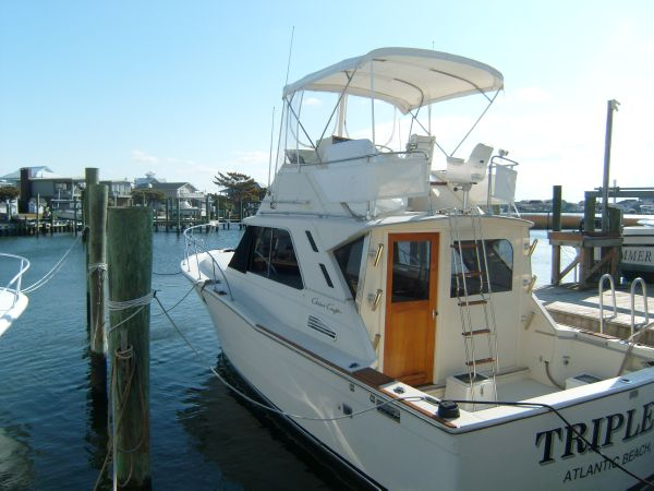 Used Chris Craft 6BTA 5.9M Flybridge Boat For Sale