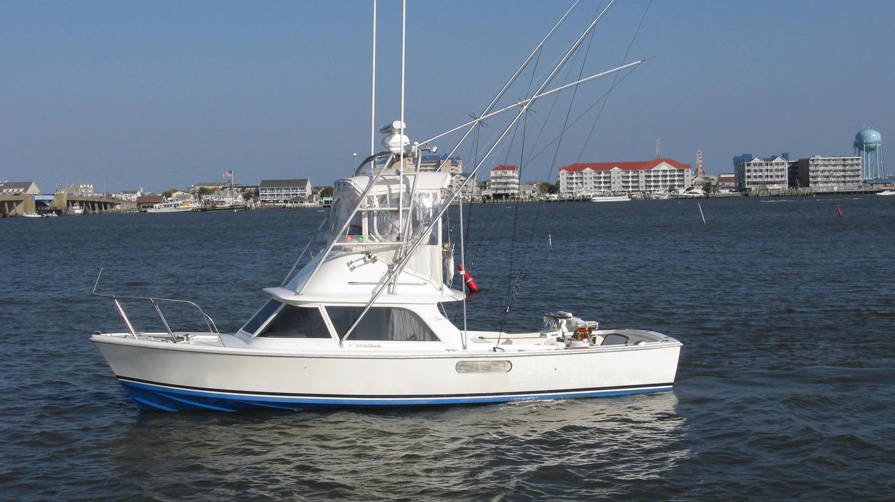 1976 used bertram 31 flybridge cruiser saltwater fishing for Saltwater fishing boats for sale