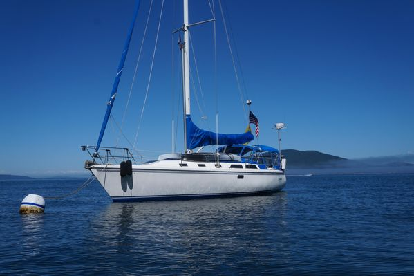 Used Catalina MK I Two Stateroom Sloop Sailboat For Sale
