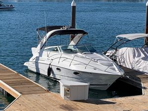 Used Doral Monticello 270 Express Cruiser Boat For Sale