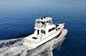 Used Tiara Yachts 4300 Flybridge Boat For Sale
