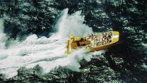 Used Cougar Wildcat Power Catamaran Power Catamaran Boat For Sale