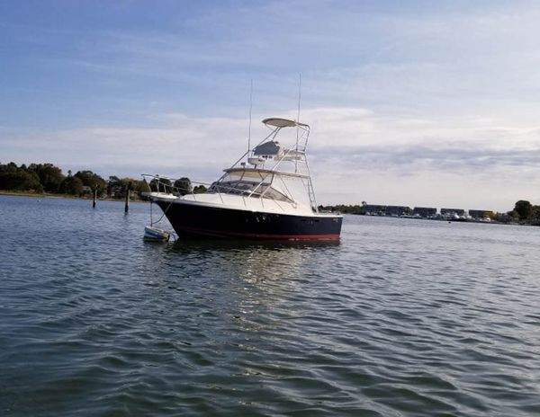 Used Blackfin 29 Combi Express Cruiser Boat For Sale