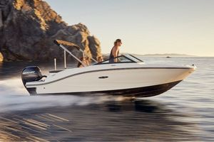 New Sea Ray 19SPX-OB Other Boat For Sale
