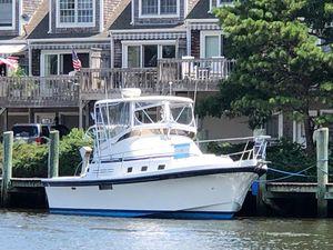Used Albin Sport Fisher Flybridge Boat For Sale