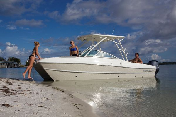 New World Cat 230 SD Center Console Fishing Boat For Sale