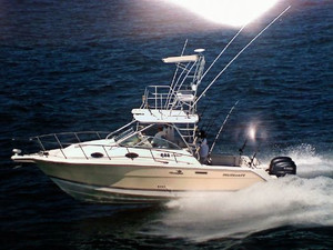 Used Wellcraft 290 Cruiser Boat For Sale