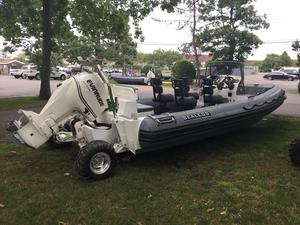 New Sealegs 7.7m Tender Boat For Sale