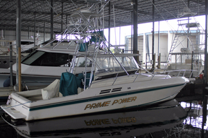 Used Intrepid 376 Cuddy Cabin Boat For Sale