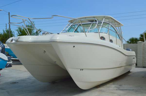 New World Cat 320EC Express Cabin Power Catamaran Boat For Sale