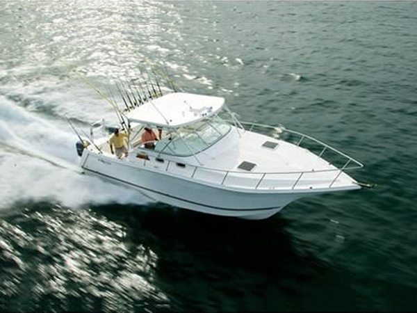 Used Pro Kat 3660 Sport Fish Power Catamaran Boat For Sale