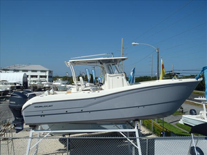 New World Cat 295 CC Power Catamaran Boat For Sale