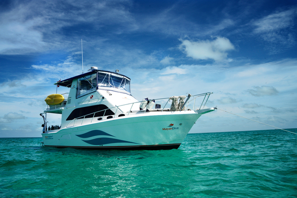 Used Tajoma Trawler Boat For Sale