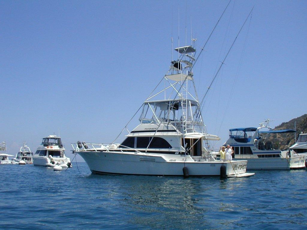 Used Bertram 466 Sport Fisher Sports Fishing Boat For Sale