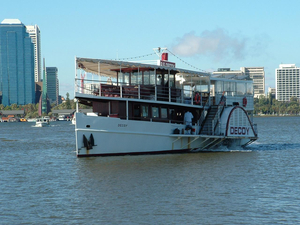 Used Paddle Steamer Decoy Commercial Boat For Sale