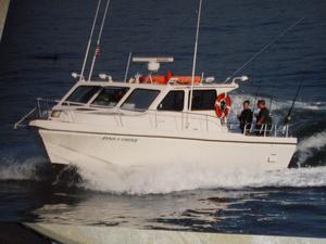 Used Sea Hawk Fish/Dive/Passenger Boat For Sale