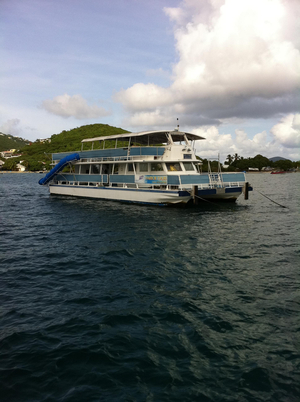 Used Corinthian Catamaran Multi Passenger Commercial Boat For Sale