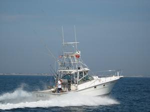 Used Topaz 36 Sportfisherman Sports Fishing Boat For Sale