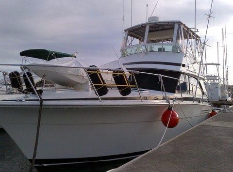 Used Bertram Mark III Convertible Fishing Boat For Sale
