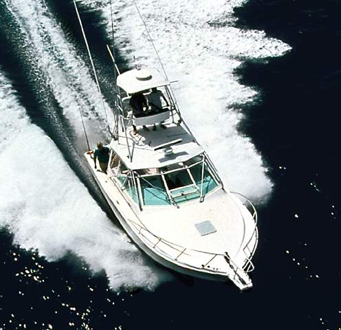Used Cabo Yachts 31 Express Sports Cruiser Boat For Sale