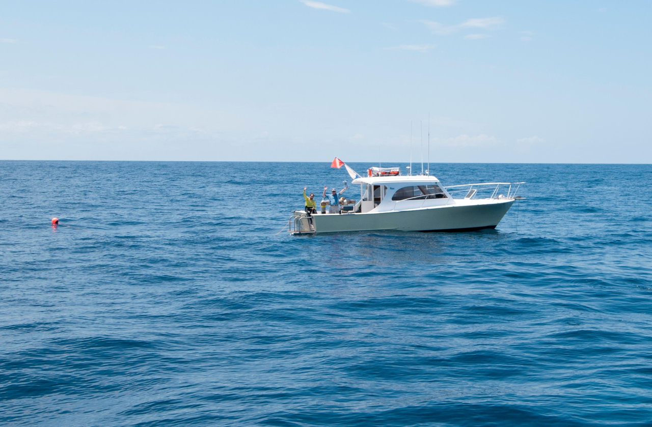 1996 used custom express sports fishing boat for sale for Express fishing boats for sale