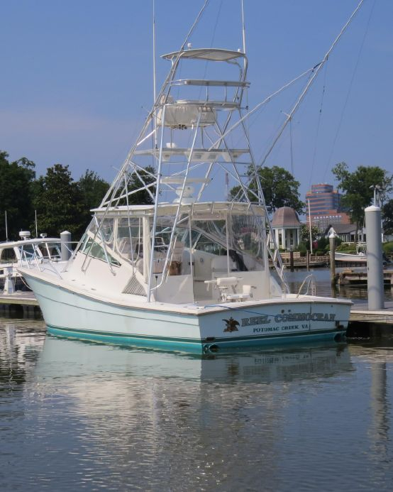 Used Reel Commocean Topaz Sports Boat For Sale
