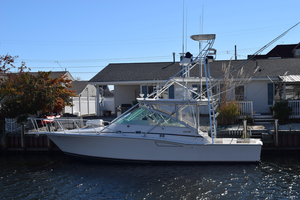 Used Cabo Yachts 35 Express Saltwater Fishing Boat For Sale