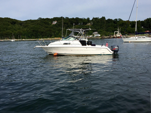 Used Stamas 270 Express Cruiser Boat For Sale
