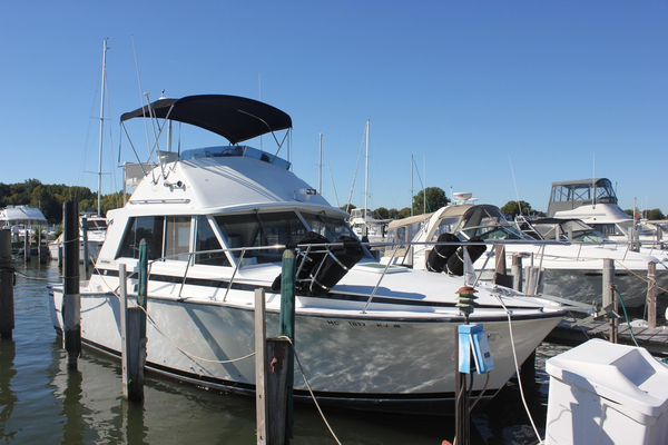 Used Bertram 33 Flybridge Cruiser Convertible Fishing Boat For Sale