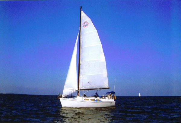 Used Freedom Yachts Modern Cat Sloop Antique and Classic Boat For Sale