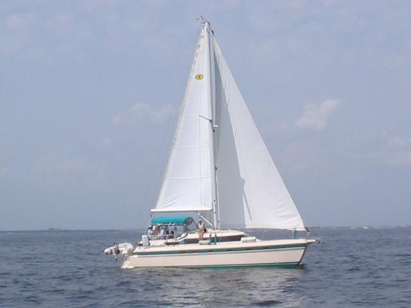 Used Island Packet Cat 35 Multi-Hull Sailboat For Sale