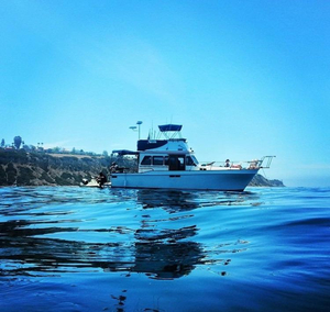 Used Californian 34 LRC Cruiser Boat For Sale